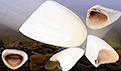 什么是烤瓷牙?常见的烤瓷牙材料